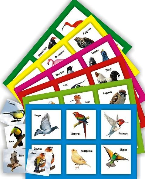 """Лото&quotЗнакомство с птицами"""" арт. 10518"""